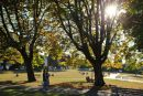 Kitsalano Park Vancouver.