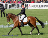 William Fox-Pitt & PARKLANE HAWK