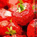 Strawberry Mosaic