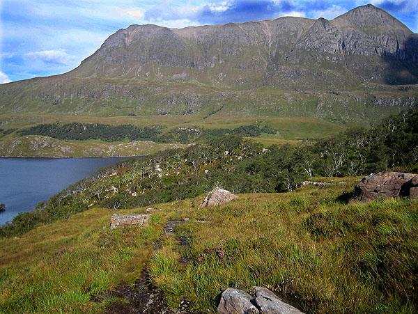 Drumrunie woodland and Cul Mor