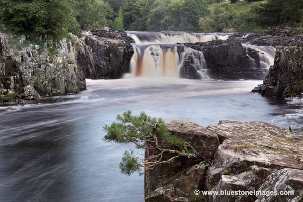 01M-2854 The River Tees at Low Force Bowlees Upper Teesdale County Durham UK