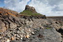 02D-2689 Lindisfarne Castle Viewed from the Beach Holy Isle Northumberland UK