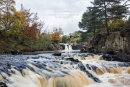 02M-9113 Low Force on the River Tees in Autumn Upper Teesdale, County Durham U