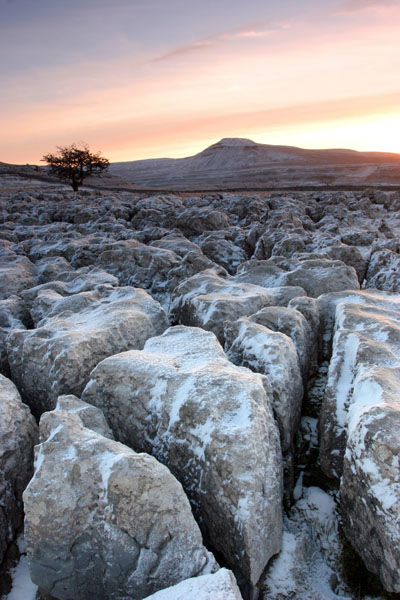 07-0810 Dawn Winter Light on a Karst Landscape with Ingleborough as a Backdrop, Scales Moor, Yorkshire Dales