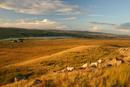 9337 Evening Light on Hury Reservoir. Taken from the Pennine Way Footpath, Goldsborough, Teesdale, County Durham.