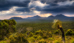 Sun Rays Over The Stirling Range