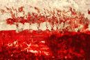 Cornish-Trees-Wild Red
