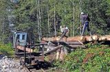 Loading the logs by hand.