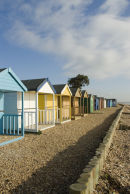 Portrait of Beachhuts
