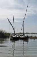 tranquil boats