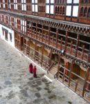 Monks in Punakha Dzong
