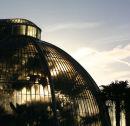Kew's magnificent Palm House