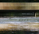 Sackler Bridge - reflections