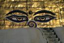 Temple eyes