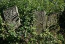 Abandoned graveyard