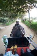 The best form of transport on Sark