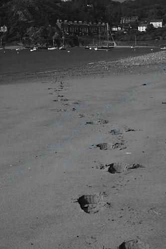 Fairbourne Beach Mono