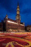 Brussels Flower Carpet, Belgium