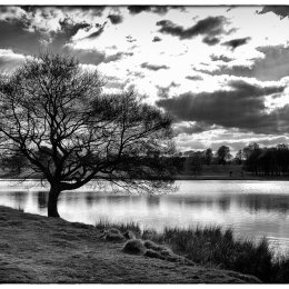 Tatton View 3