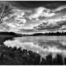 Tatton View 5