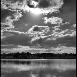 Tatton View 8