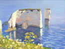 Old Harry with Daisies