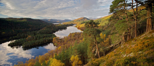 Glen Affric - Autumn