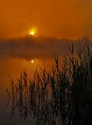 Sunrise-at-Frensham