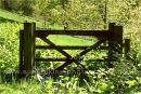 gate, no fence