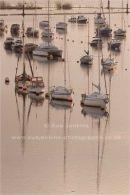 muted morning marina