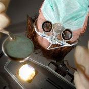 Royal Army Dental Corps Dental Hygenist